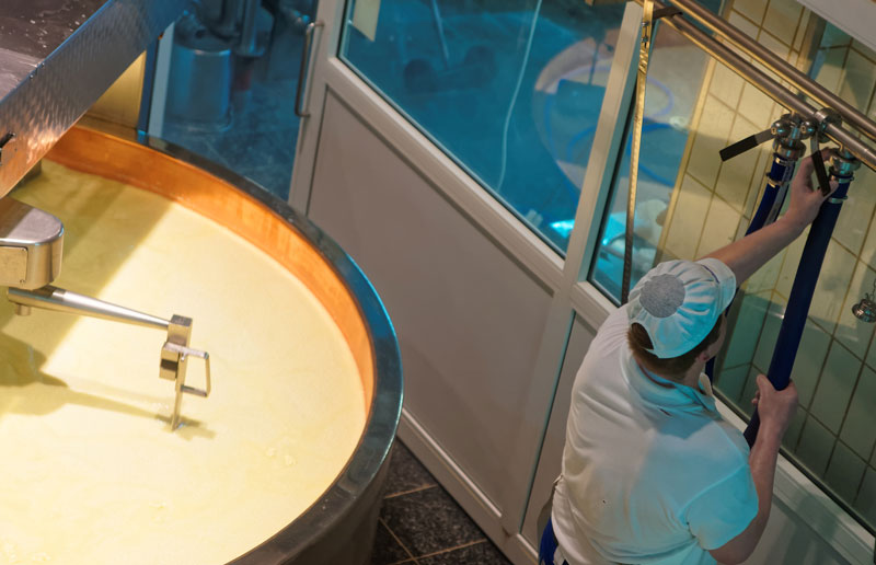 Friesen Nutrition disinfect cheese factory