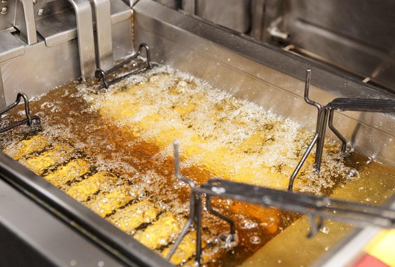 Friesen Nutrition deep fryer